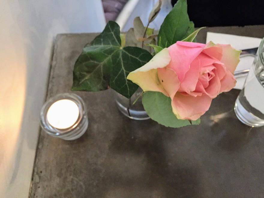blog_rose
