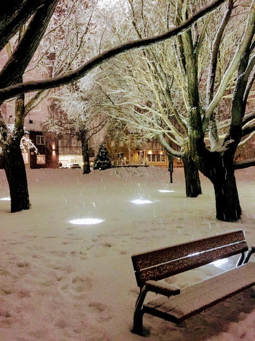 portfolio_snow001_2