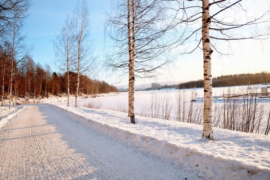 portfolio_snow004_2