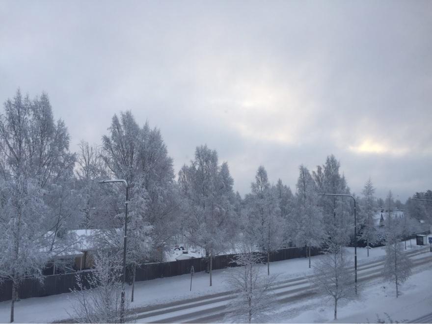 portfolio_snow005_2
